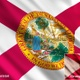 Florida State Flags - VideoHive Item for Sale