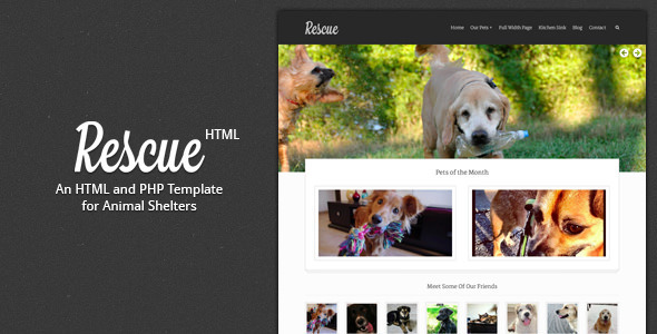 Rescue - Animal Shelter HTML Template