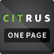 Citrus - OnePage Parallax HTML Portfolio - ThemeForest Item for Sale