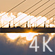 Sunrise Bridge - VideoHive Item for Sale