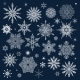 Winter Pattern with Various Falling Snowflakes - GraphicRiver Item for Sale