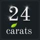 24 Carats - Business Portfolio - ThemeForest Item for Sale