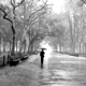 Sentimental Walk