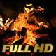 Bonfire - VideoHive Item for Sale