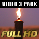 Fire Torches - VideoHive Item for Sale