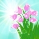Spring Card Background with Sun and Tulips - GraphicRiver Item for Sale