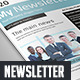 Business Indesign Newsletter Template - GraphicRiver Item for Sale