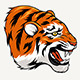 Tiger Head - GraphicRiver Item for Sale