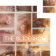 The Slideshow (mosaic) - VideoHive Item for Sale