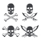 Pirate Flag Design Elements - GraphicRiver Item for Sale