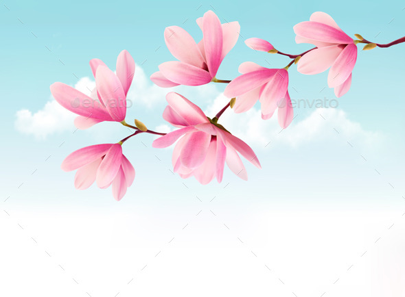 Valentine Background with Pink Flowers