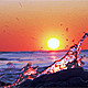 Winter Sunset on the Sea 2 - VideoHive Item for Sale