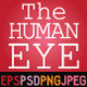 The Human Eye - Section - GraphicRiver Item for Sale