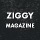 Ziggy - Professional Blog/Magazine WordPress Theme - ThemeForest Item for Sale