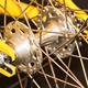 Freewheel Bicycle Hub - AudioJungle Item for Sale
