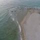 Seashore - VideoHive Item for Sale