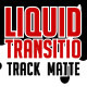 Liquid Transition Matte - VideoHive Item for Sale