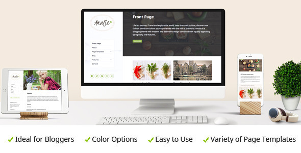 Amalie - Modern Blogging WordPress Theme
