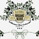 Decorative Olives Label and Badge Elements - GraphicRiver Item for Sale
