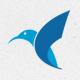 Colibri Logo Template - GraphicRiver Item for Sale