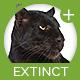 Extinct Loop - AudioJungle Item for Sale