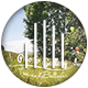 Photo Gallery - Tree And Balloons - VideoHive Item for Sale