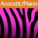Sentimental Acoustic Guitar & Piano