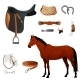Set Of Equestrian Equipment For Horse. - GraphicRiver Item for Sale