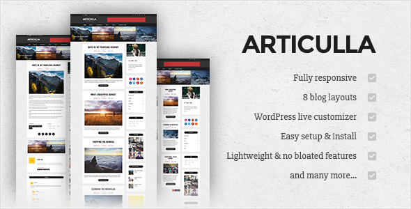 Articulla - Responsive WordPress Blog Theme