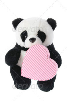 Panda Soft Toy with Gift Box
