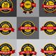 Satisfaction Guarantee Warranty Badges Labels - GraphicRiver Item for Sale