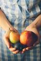 Hands holding fresh organic fruits. Retro colors - PhotoDune Item for Sale