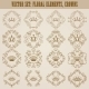 Victorian Crown and Decorative Elements - GraphicRiver Item for Sale