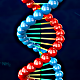 DNA Double Helix - VideoHive Item for Sale