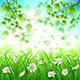 Flower and Leaf Background - GraphicRiver Item for Sale