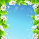 Flower and Leaf Frames - GraphicRiver Item for Sale