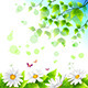 Flower and Leaf Backgrounds - GraphicRiver Item for Sale