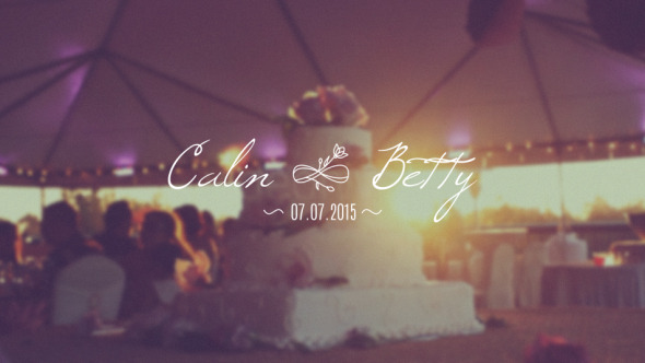 Wedding Pack Video Effects Stock Videos From VideoHive