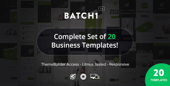 Batch1 - Complete Set of 20 Business Email Templates