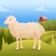 Sheep Standing on Grass with Farm - GraphicRiver Item for Sale