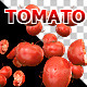 Tomato Dance - VideoHive Item for Sale
