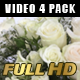 Flower-4 Pack - VideoHive Item for Sale