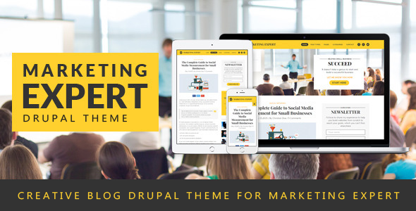 Expert - Blog Drupal Theme for Marketer