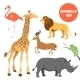 Cute African Animals Set For Kids In Cartoon Style - GraphicRiver Item for Sale