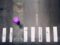 Looking Down to Street with a Purple Umbrella Person - PhotoDune Item for Sale