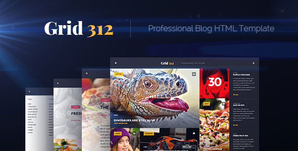 Grid312 - Professional Blog HTML Template