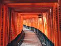 Fushimi Inari Taisha in Kyoto - PhotoDune Item for Sale