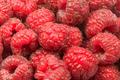 Raspberries - PhotoDune Item for Sale