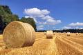 Hay bales in a field - PhotoDune Item for Sale