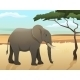 Beautiful Wild African Animal Illustration - GraphicRiver Item for Sale